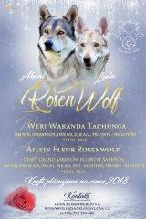 rosenwolf-let
