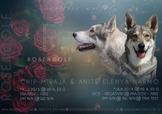 f_rosenwolf_0